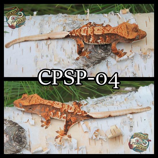 CPSP-04