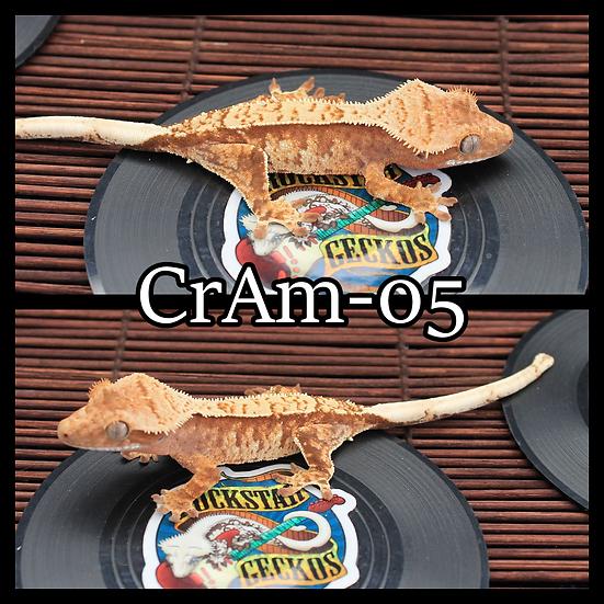 CrAm-05