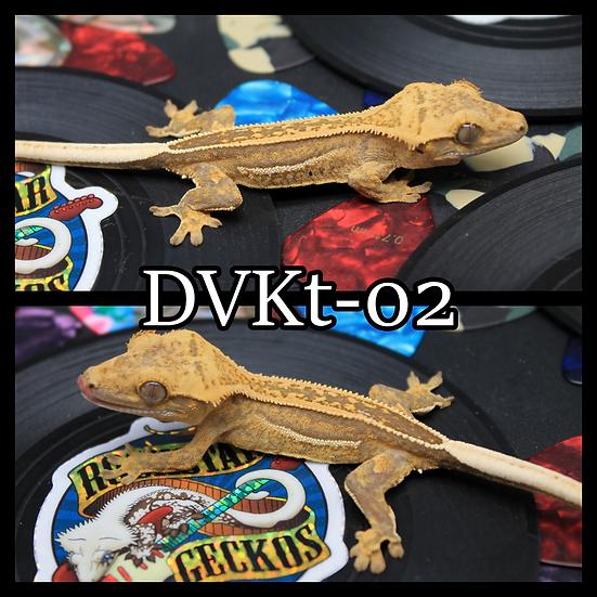DVKt-02