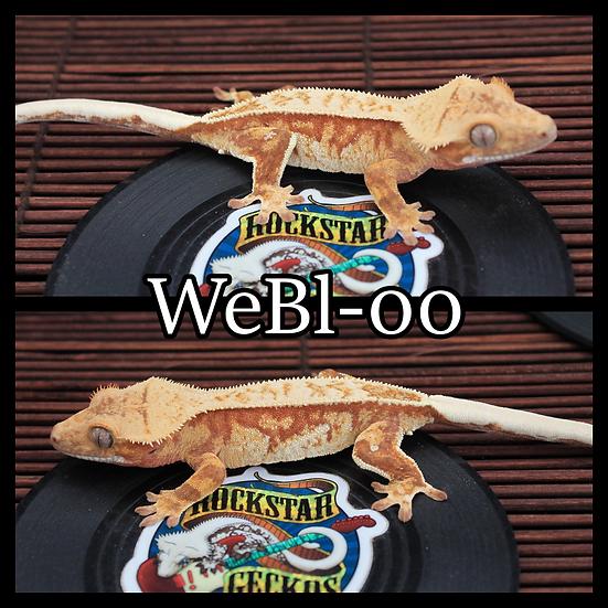 WeBl-00