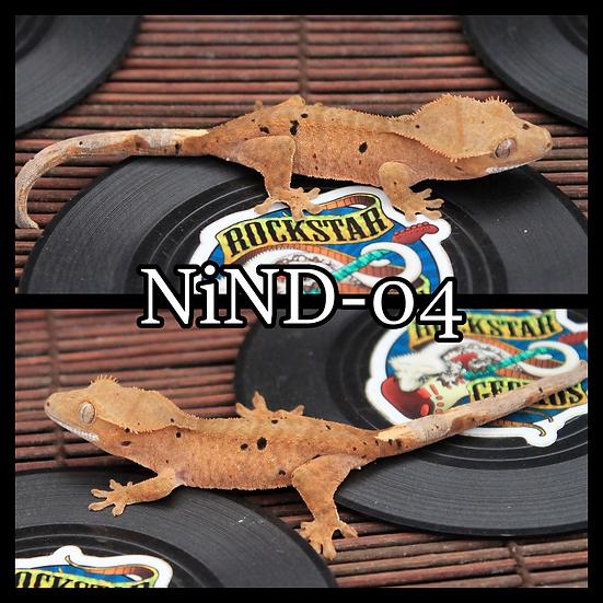 NiND-04