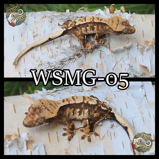 WSMG-05