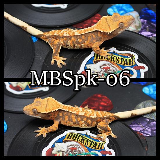 MBSpk-06