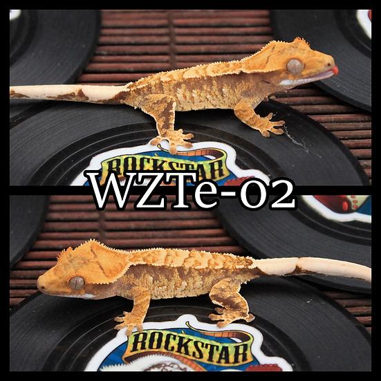 WZTe-02