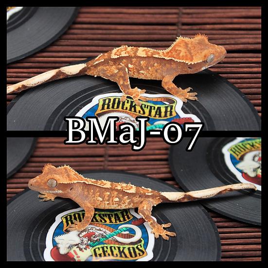 BMaJ-07