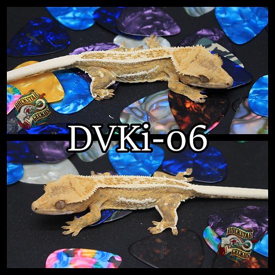 DVKi-06