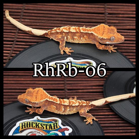 RhRB-06