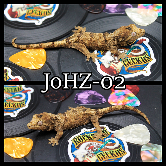 JoHZ-02