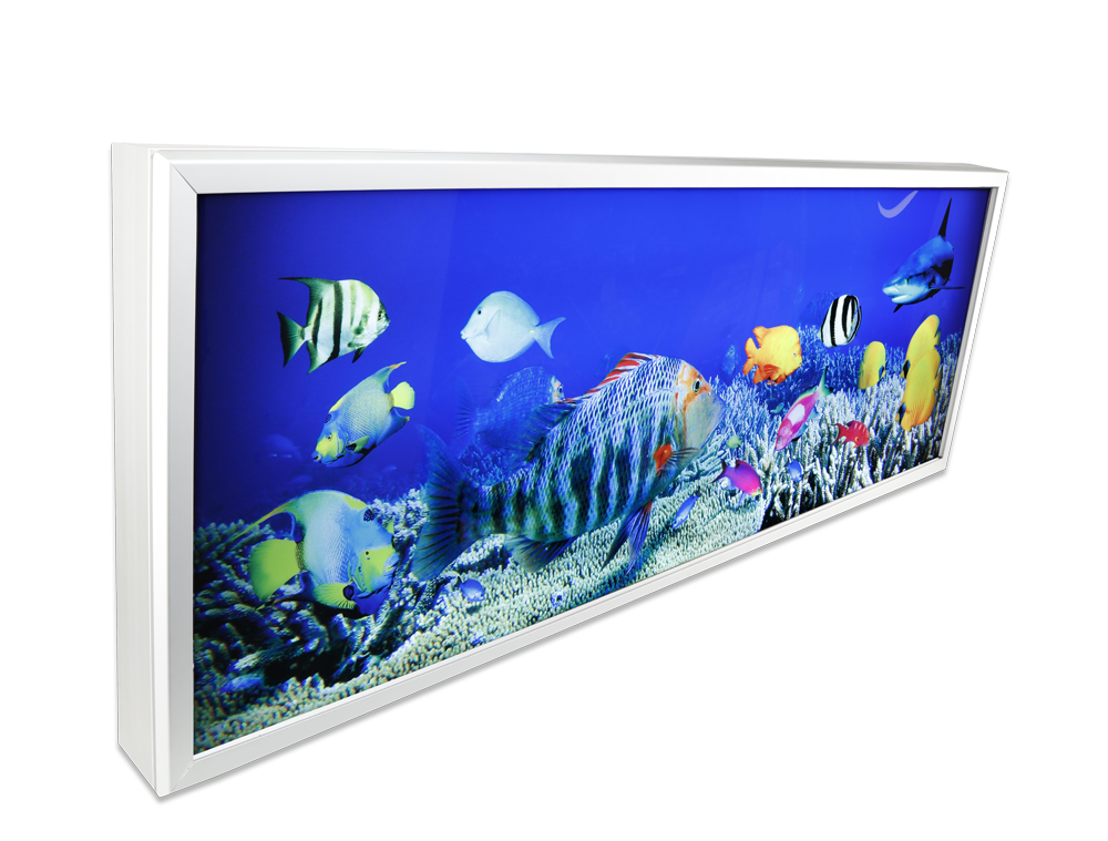 led-snap-frame-light-box