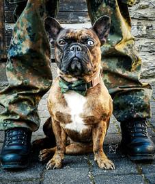 Ayko in the Army now - VierPfotenMode