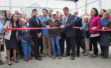 cut-ribbon-orig.jpg
