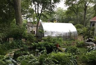 greenhouse-orig.jpg