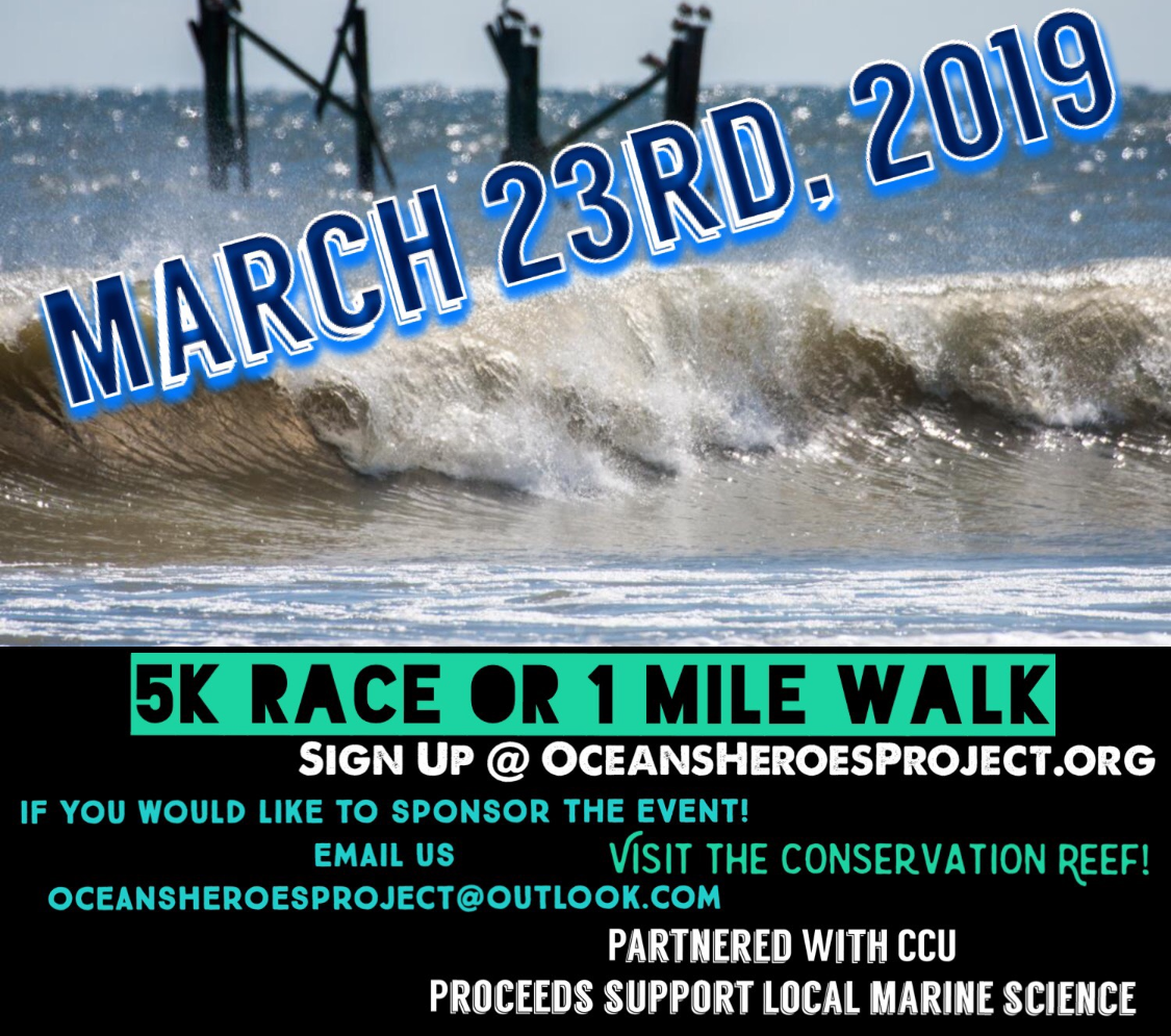 Race For The Ocean!