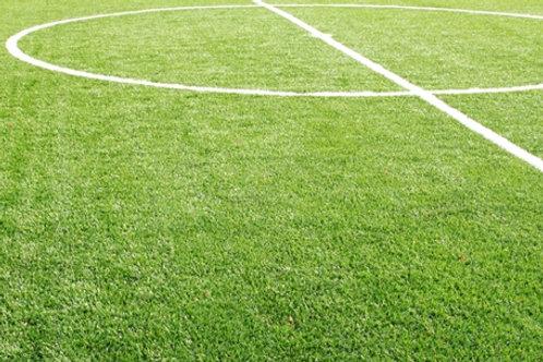 Sports Field Construction Grass Seed Mix