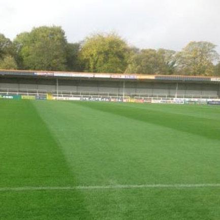 Football & Rugby Pitch 100% Ryegrass Grass Seedmix