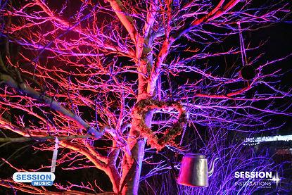 branded therapy garden tree.jpg