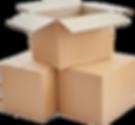 Case & Carton