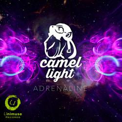 CAMEL LIGHT