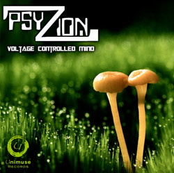 PSYZION