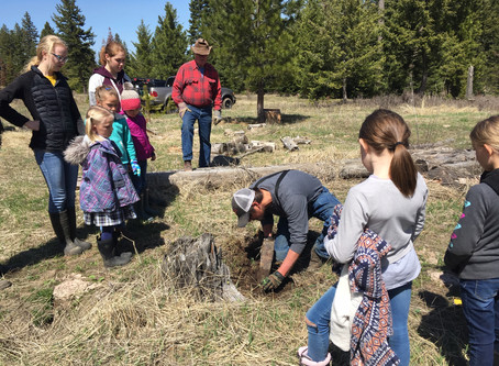 Students plant tree seedlings to celebrate Arbor Day