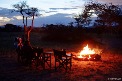 """Campfire also known as """"Bush TV"""" in the Central Serengeti."""