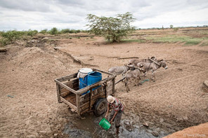 Water cart in the Rift Valley in Tanzania
