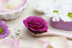 rose-3141794_1280.jpg