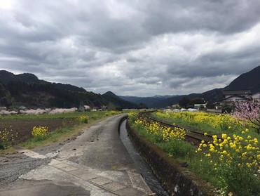 山里の訪問診療2016春⑤: