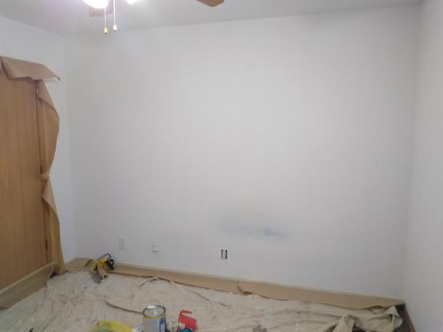 Painting and Powewashing Pros