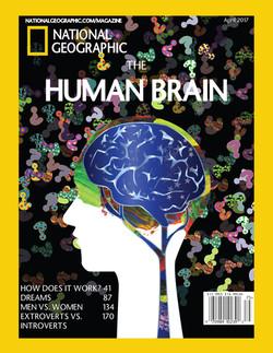Human Brain Magazine Cover