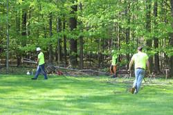 Orion Tree Service Crew