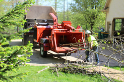 Stuffing The Wood Chipper
