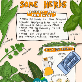 Get To Know Some Herbs