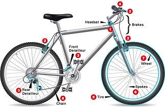 bike_tuneup_diagram_web.jpg