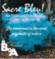sacre_bleu.jpg