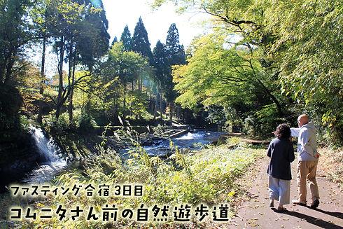 3日目_コムニタさん前の自然遊歩道.jpg