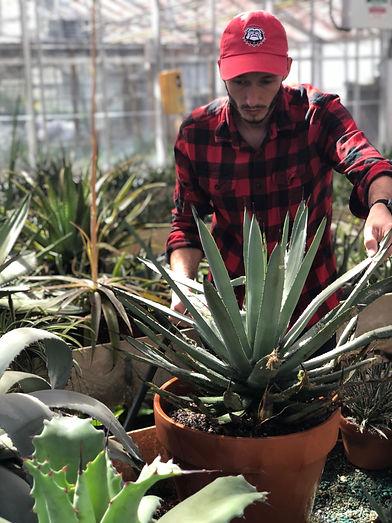 PHILIP working at greenhouse.JPG