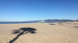 Venice Beach Cerveteca Graphikos