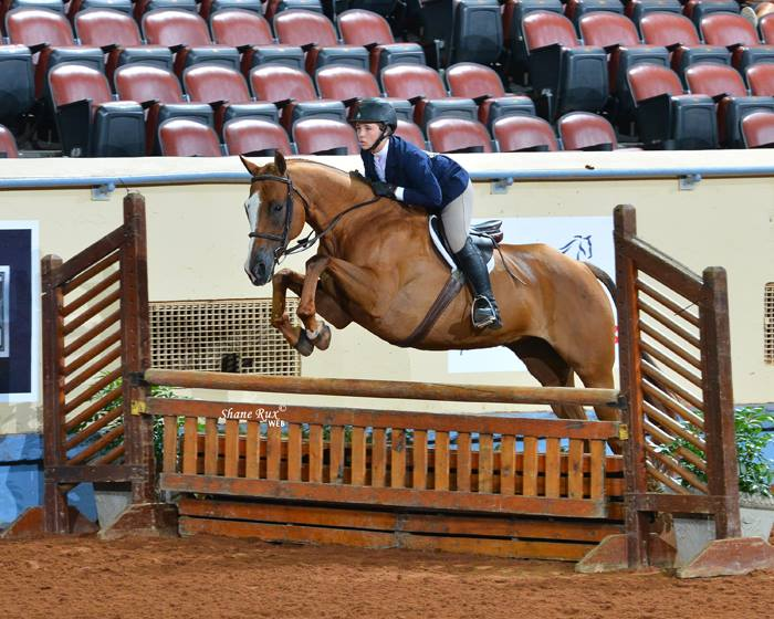 AQHA Youth Worlds 2018