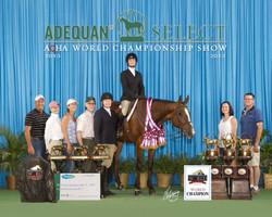 World Show 2013