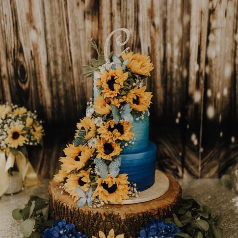 CJP-Emily.Anthony.Wedding-360.jpg