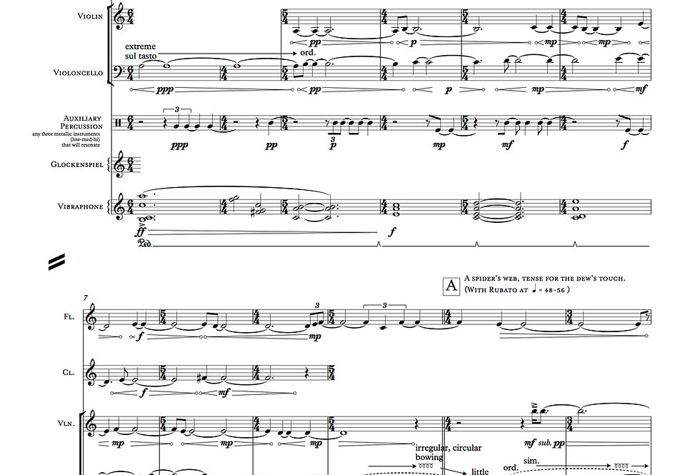 Still & Brimming—Mirror from Night Like Velvet (Digital ONLY)