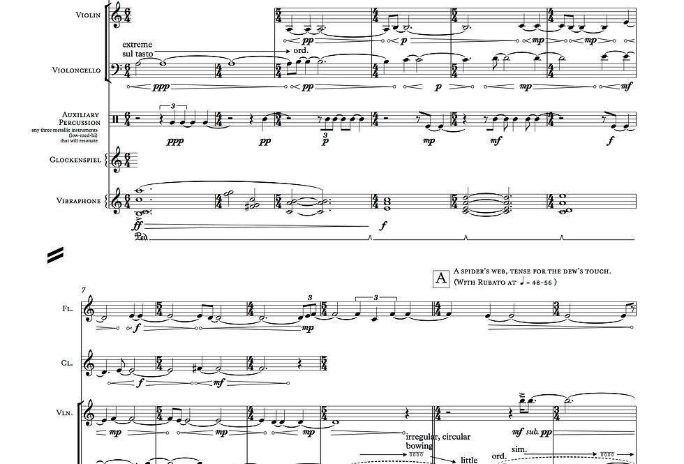 Still & Brimming—Mirror from Night Like Velvet (Digital and Hard Copies)