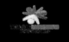 TellTale Marketing Logo