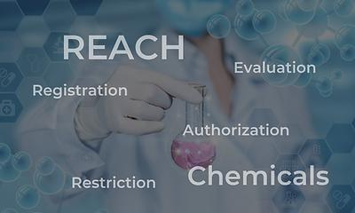 REACH Regulation.png