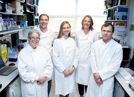 Kalium Health secures £950k investment
