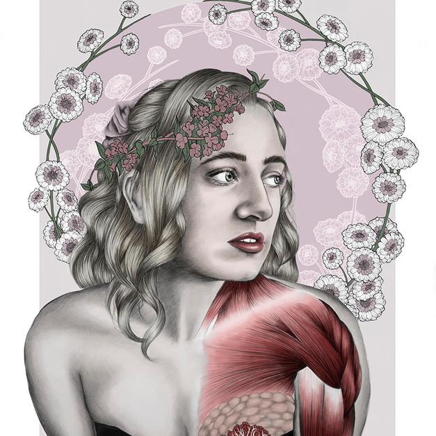 Floral Anatomy BLUSH