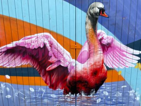 Street Art x Klassik Stiftung