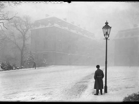 Die Bibliothek im Winternebel