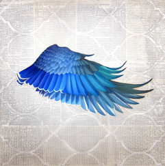 Wings collage blue